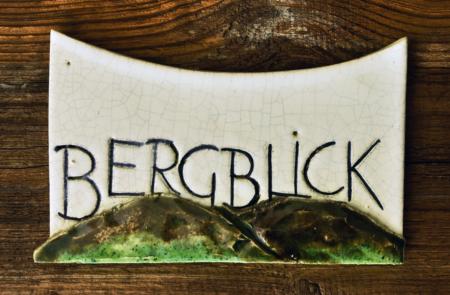 Untersteinerhof-Ferienwohnung-Bergblick